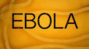 How well do you understand Ebola and the risk of contracting the disease?