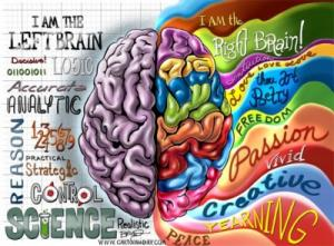 "illustration: traits of the ""left brain"" and ""right brain"""